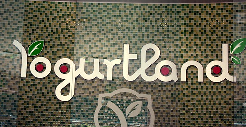 Yogurtland - Interior