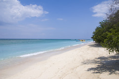 Gili Trawangan (Willy_G91) Tags: travel beach indonesia landscape geotagged island nikon gili paysage isle lombok gilitrawangan reporting trawangan indonsie d80