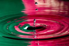 (Lichtenstein) Tags: macro water drops nikon sb600 gotas gota abstracto colorido gotasdeagua d300s lichtenteinjoel