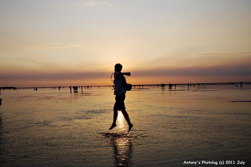 高美濕地看夕陽 -69