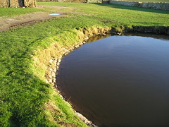 Sker House pond (The Glamorgan-Gwent Archaeological Trust) Tags: house pond farm bridgend sker ggat