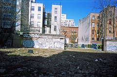 Klops, Trip, Adek, and Jade (Waves of Perception) Tags: camera new york city nyc trip art film graffiti jade adek disposable tko btm klops