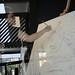 Artisti in Vetrina in Mostra Daniela Valentino