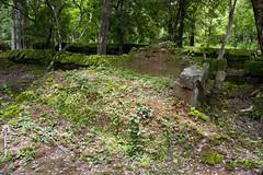 Prasat Krachap (Prasat E) (Keith Kelly) Tags: stone ancient asia cambodia southeastasia capital ruin kingdom kh siemreap angkor laterite kampuchea kohker khmerempire prasate jayavarmaniv brahmanic 928944ad prasatkrachap