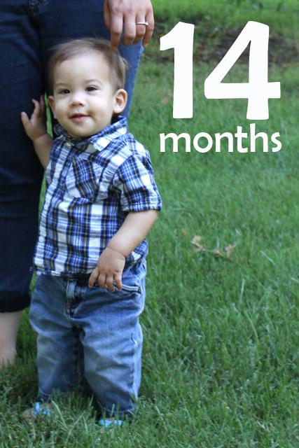 14 month portrait
