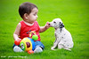 """""""A dog will teach you unconditional love. If you can have that in your life, things won't be too bad."""" - Robert Wagner (Muhammad Fahad Raza) Tags: light portrait playing green grass canon puppy kid friendly ambient 18 85 dalmatian canon8518 dalmatianpuppy"""