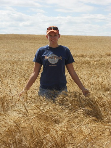 Tall wheat