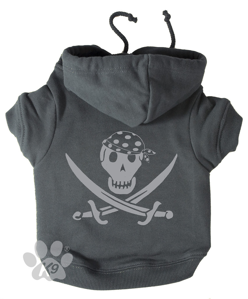 Silver Pirate Hoodie