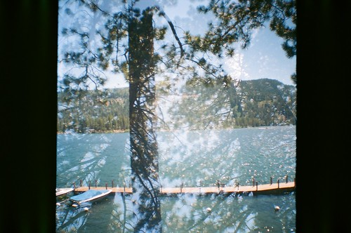 Double Exposed Trees