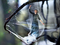 Entrapment (marianna a.) Tags: woman canada tree collage composite forest photoshop lumix trapped branch quebec montreal web vine panasonic g1 translucent seethrough transparent cloth entrapment enchanted marianna entangled younglady armata mariannaarmata
