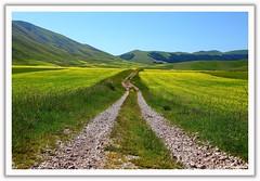 Passeggiando a Castelluccio