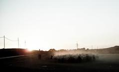 Pastore errante dell'A-6 (Sandro Amici) Tags: tramonto colore campagna sole controluce pecore pastore gregge nikoncoolpixl11