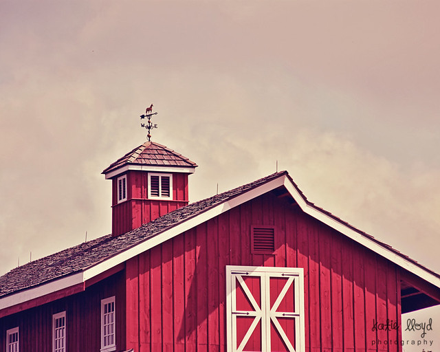 barn-at-high-noon---full-fr