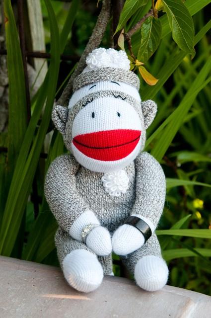 20_monkey