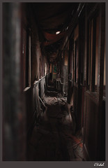 Pasajeros en el olvido (rincondelibertad) Tags: train tren remember darkness ruinas secrets olvido recuerdos oscuridad secretos vagón
