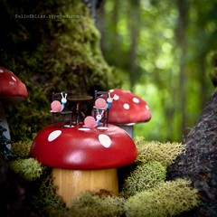 Dining at The Amanita Terrace (~.~) (fullofbliss) Tags: red white cute mushroom woodland fun moss woods bokeh tiny teeny snails amanita tableandchairsproject