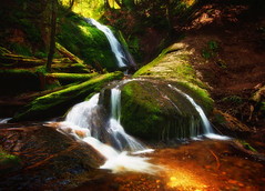 Coal Creek Falls (Gabriel Tompkins) Tags: county longexposure trees red usa sunlight green nature water rock creek forest landscape waterfall washington moss nikon rocks king hiking logs sigma blurred falls foliage dirt shade pacificnorthwest 1020mm washingtonstate 1020 pnw damp issaquah cougarmountain mytop coalcreek 2011 d90 sigma1020mmf456exdc nikond90 tronam gabrieltompkins
