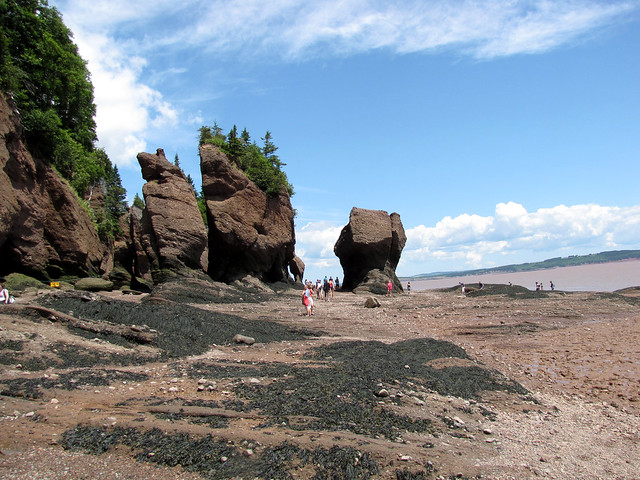 Hopewell Rocks-3