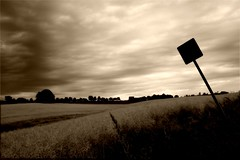 a mustard field (Torsten Reuschling) Tags: sky blackandwhite brown monochrome field sign clouds canon dark landscape eos feld mustard schwarzweiss senf platinumheartaward canoneos1000d canoneosdigitalrebelxs mygearandme mygearandmepremium mygearandmebronze mygearandmesilver torstenreuschling blinkagain artistoftheyearlevel3 artistoftheyearlevel4