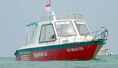 トローリングフィッシング(パワーボート)