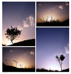 4 Pictures from a Sunset (Ebrahim Baraz) Tags: baraz  ebrahimbaraz