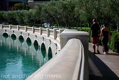 Las Vegas, Nevada - By Bellagio fountain