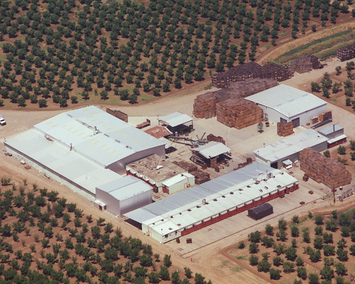 An aerial view of the Wilbur Packing Company in California's Sacramento Valley shows the company's production site. As fifth-generation California farmers, the Wilbur family has successfully exported prunes and dates internationally for nearly 20 years.