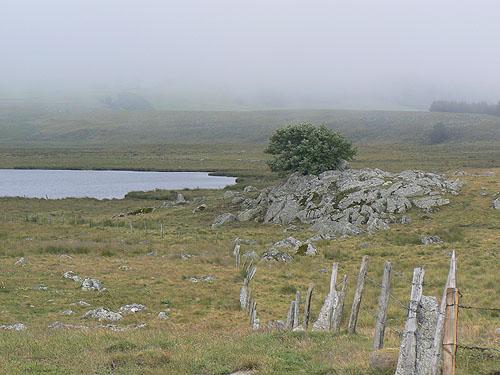 brume au lac.jpg