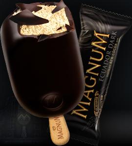 Magnum Noir