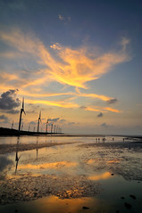 Sunset in Wetland  (Vincent_Ting) Tags: sunset sky water windmill silhouette clouds taiwan windmills  formosa   windturbine wetland  windturbines        formose