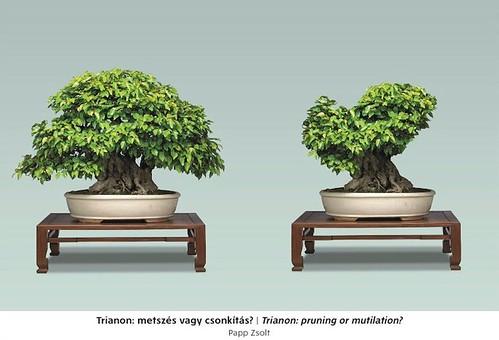 Trianon: pruning or mutilation?
