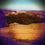 Wine Country (Near Carmel Valley), CA. thumbnail