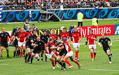Rugby World Cup - New Zealand v Canada, Wellin...
