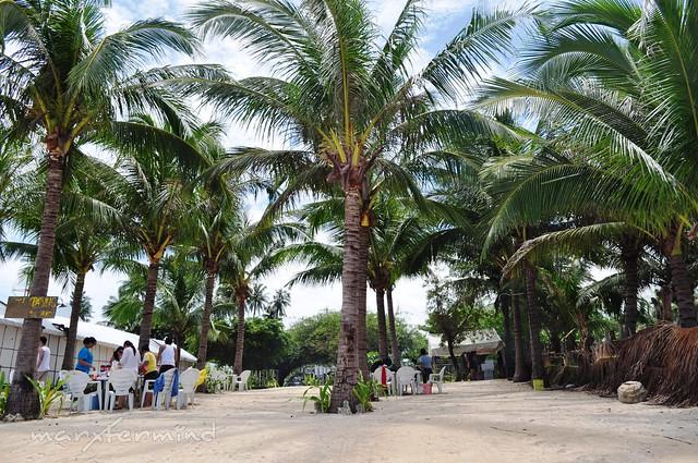 Puerto Del Sol Picnic Area