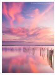 Purple dusk III (Salva del Saz) Tags: longexposure sunset lake lago twilight agua dusk crepusculo wetland waterscape albufera largaexposicin humedal lalbufera singhray salvadordelsaz salvadelsaz 3stopreversegnd