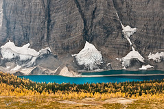 Floe Lake And Golden Larch Trees (Marc Shandro) Tags: autumn cliff lake canada fall nature beautiful landscape scenery outdoor britishcolumbia scenic alpine vegetation northamerica rockymountains sunlit majestic larch rockwall freshwater environments glaciallake magnificence grandness kootenaypark treesforests