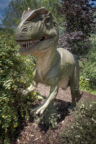 508/1000 - Allosaurus by Mark Carline