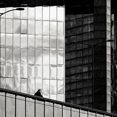 . (lazy_lazy_dog) Tags: windows sky blackandwhite reflection building glass architecture londonbridge concrete cityscape centrallondon