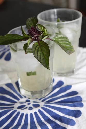 Thai Basil Limeade