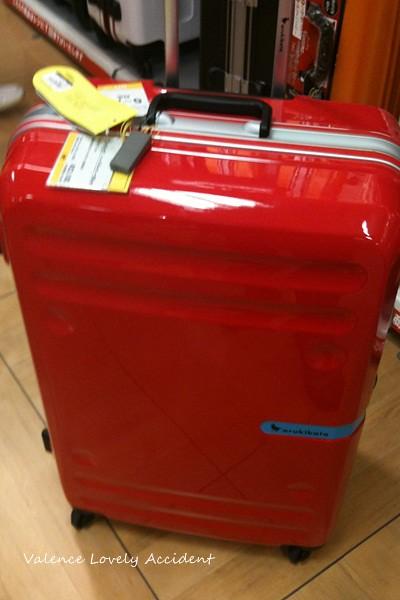 物色行李箱01