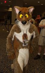 dsc_0578_01 (fibrefennec) Tags: coyote furry ciro fursuit fwa fwa2011