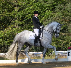 dressage class M** (neulands) Tags: show horses germany cheval m pferde turnier holstein dressage