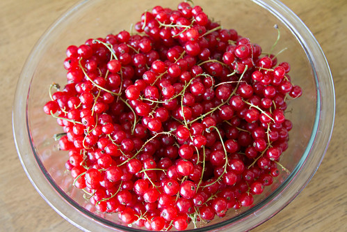 Red Currant Jelly - 1