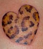 leopard heart (LauraBeeBennett) Tags: tattoo hearts stars tattoos napavalley tatoos tatoo tatto tattos startattoo suntattoo tattoolady tattooedwomen napavalleycalifornia hearttattoos californiatattoos flyingcolorstattoo ta2lady californiatattoostudio