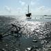 Barco encalhado na mare baixa