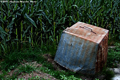 66/365 [365 Project] - Garbage in the Cornfield (Stefano.Minella) Tags: beautiful field photoshop canon project eos is photo garbage cornfield day with shot post 33 near  66 l production cornfields another 365 usm ef f4 stefano lightroom casale 66th monferrato 500d 2011 minella 24105mm conr cs5 66365 mygearandme