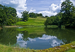 Pond and Boardwalk Area, Dinefwr Park (Eiona R.) Tags: park wales reflections carmarthenshire wfc nationaltrustdinefwr