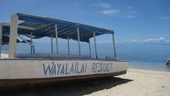 Wayalailai