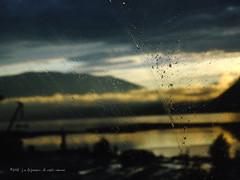 Shuswap Through The Windshield (johnfuj) Tags: mountain canada mountains nature ecology highway scenery britishcolumbia transport mount transportation land highways environment environmentalism transcanada ecosystem shuswap landtransportation