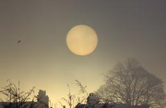 tesco sunshine (pete_pick) Tags: sun carpark sunspot lewes